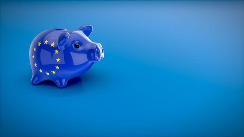 Kasica prasica u bojama europske unije