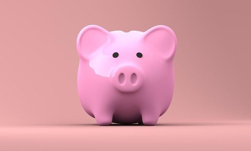 ružičasta kasica prasica
