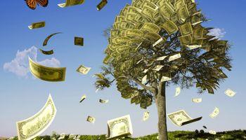 Damir Novotny: Ma kakvi bonusi, Hrvatske šume nisu na tržištu