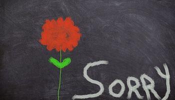 ploča sa cvijetom i natpisom ''sorry''