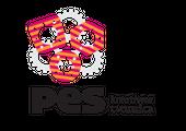 P.E.S.-ZAGREB d.o.o. za elektrotehniku i strojarstvo