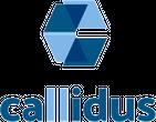 CALLIDUS GRUPA društvo s ograničenom odgovornošću za poslovno savjetovanje